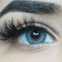 Färgade linser - 1 års - 0.00 styrka - Fairy - Blue Gray